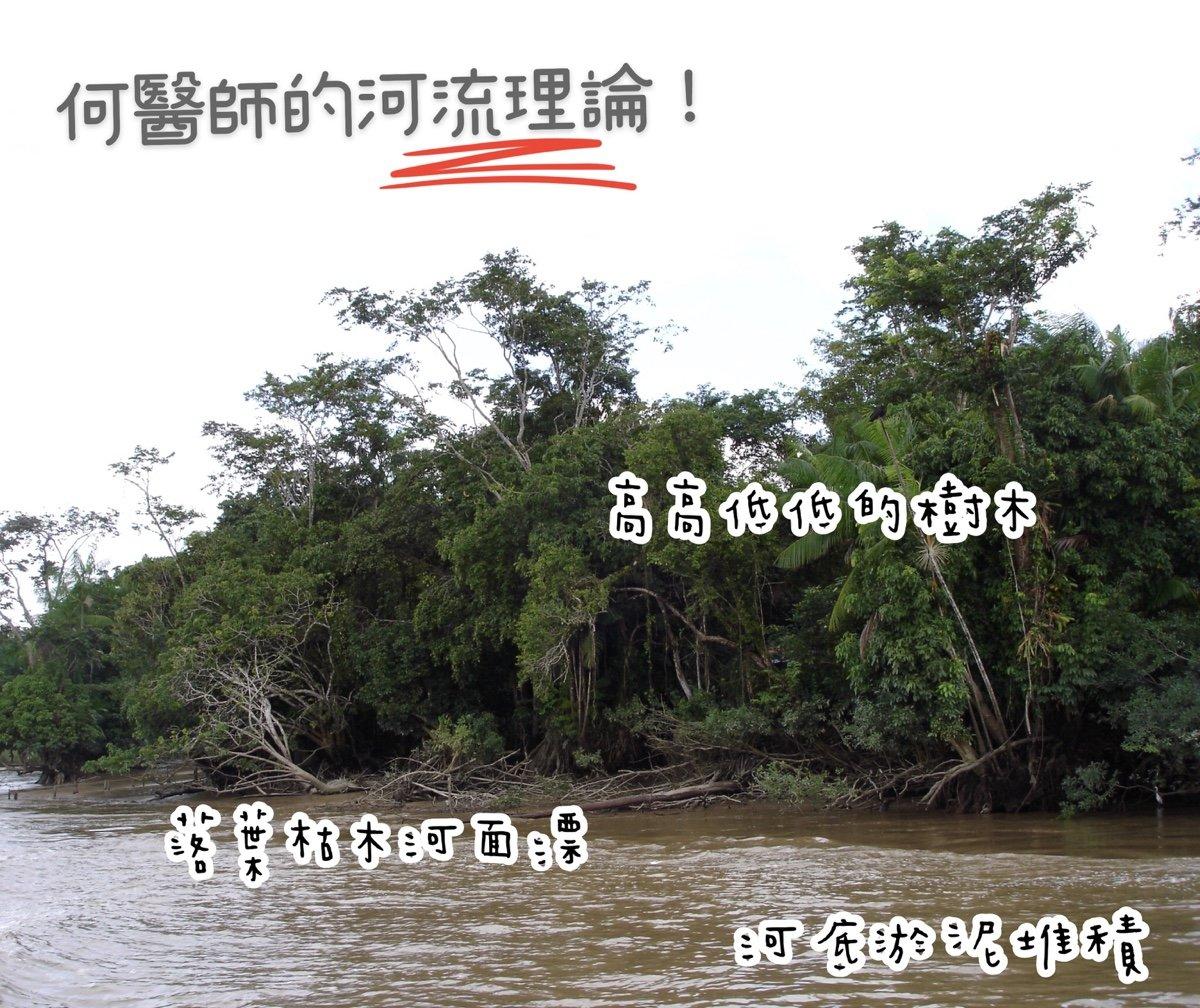 河流理論(亞馬遜河示意圖)